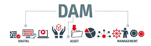 Digital Asset Management (DAM) graphic